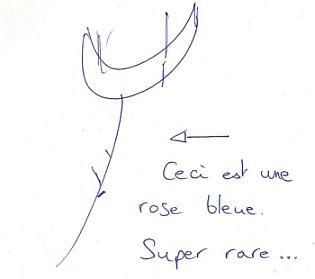 Offrez des roses 9 manières d'aborder une fille en dessinant