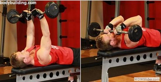 image05 Prendre du muscle : entraînement polyarticulaire ou isolation musculaire ?