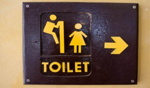 filles toilettes caca