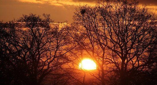 meilleur réveil matin Routine Matinale : 6 Méthodes Pour Réussir Sa Journée dès le Réveil !