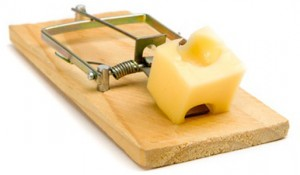 Mouse Trap with cheese - isolated on white
