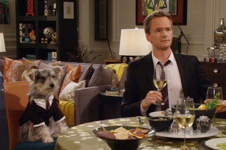 Coment draguer avec un chien m6