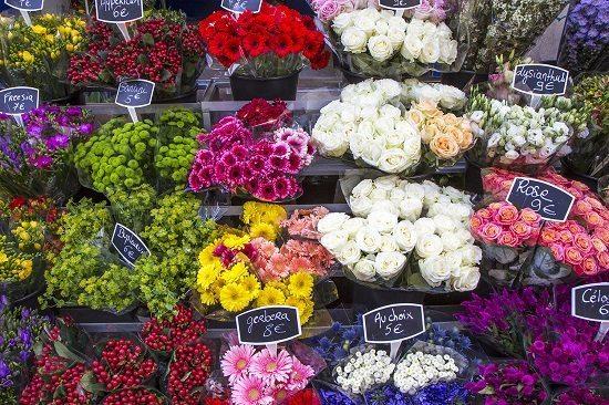 fleurs-offrir-femmes