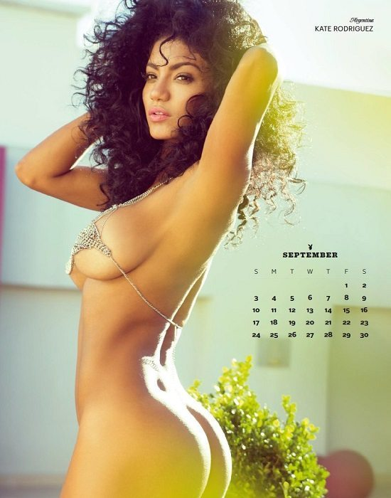 calendrier hot playboy Le Top 10 Des Calendriers Les Plus Sexy de 2017