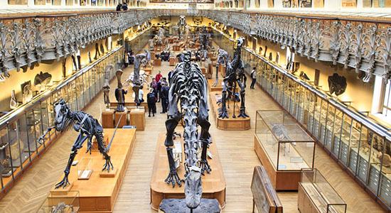 Museum-Histoire-Naturelle-Paris